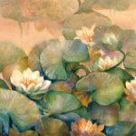 creamy_waterlilies