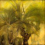 grass_trees